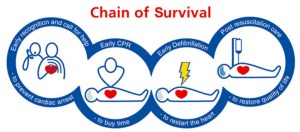 Resuscitation Council Chain of survival
