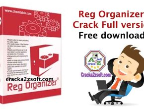 Reg-Organizer-Crack