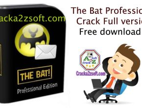 The Bat Professional Crack