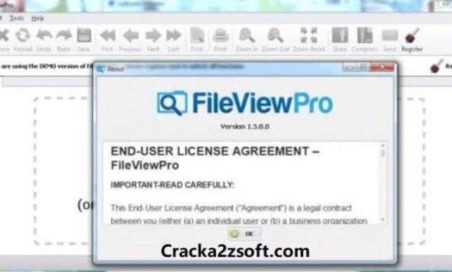 Fileviewpro 2021 Crack screenshot