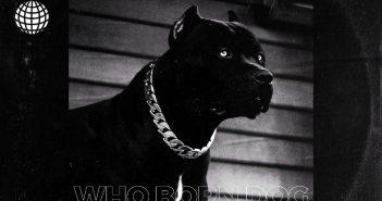 Guru - Who Born Dog (Kuami Eugene x Teephlow Diss)
