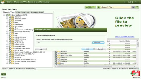 Stellar Phoenix Data Recovery 6.0 serial key