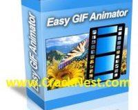 Easy GIF Animator 7 License Key Plus Crack [Free] Full Version