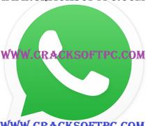 WhatsApp Messenger 2.12.250 (arm) APK Latest Version Is Here!