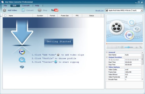 Any Video Converter Professional windows