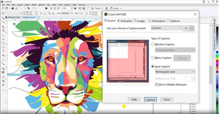 CorelDRAW Graphic Suite windows