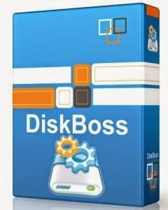 DiskBoss Pro crack
