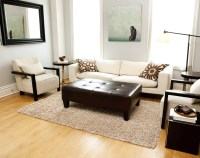 How To Use Area Rugs in Interior Decorating - Craft-O-Maniac