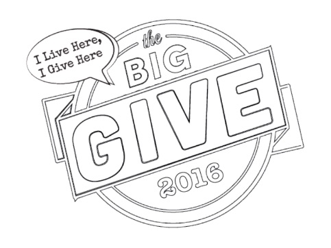 The Big Give 2016 Austin Charity Benefit