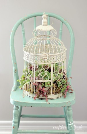 Bird Themed Home Decor White Bird Cage Planter with Succulents Vintage Blue Chair