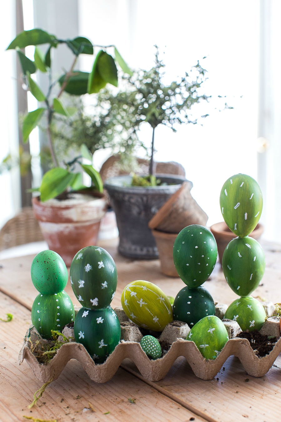 Αυγό Cactus Craftberry Μπους (1 από 1)