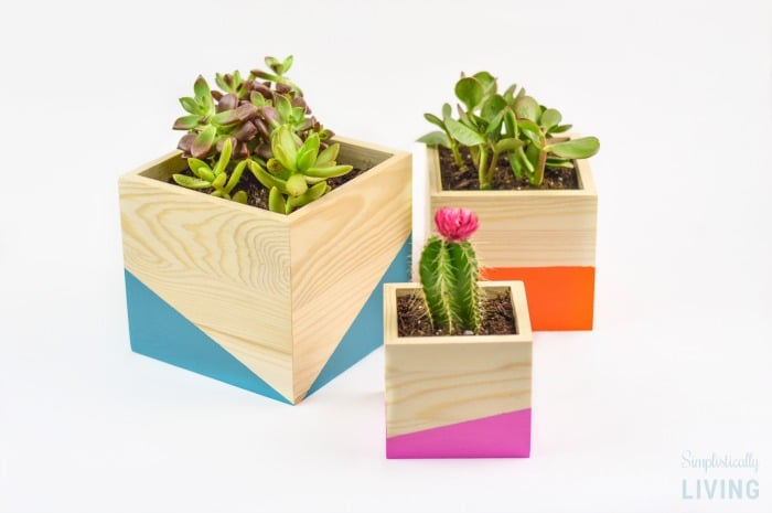 Enter to Win a $100 Walmart Gift Card from Ecoscraps!