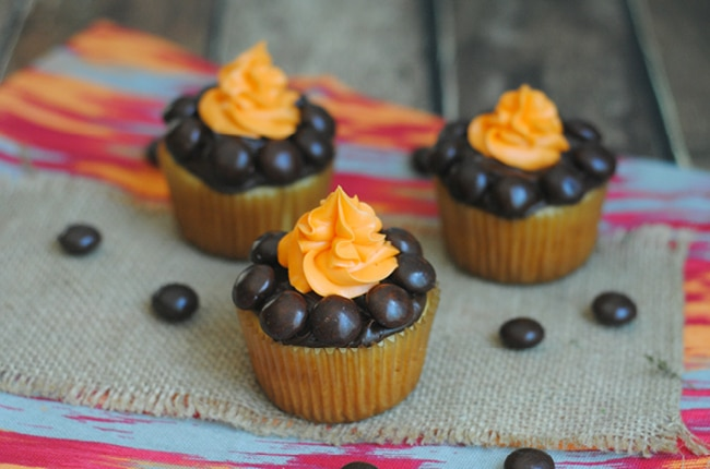 Whether you are camping in the backyard or out in great outdoors, these camping cupcakes fun to make and even funner to eat!