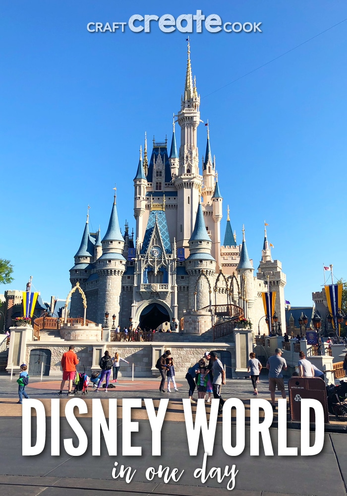 The Magic Kingdom in One Day isn't easy and you'll want to know what exactly to see and do.
