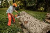 David Holzapfel cuts a log for a table