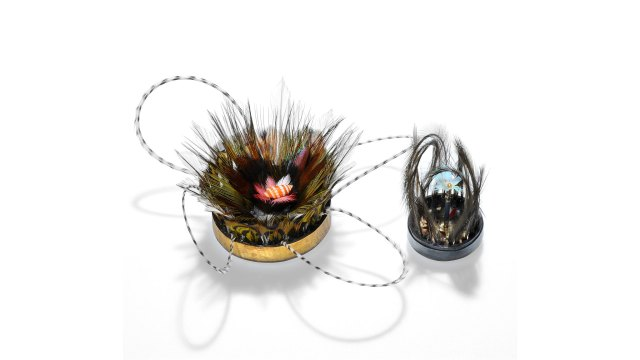 Gabrielle Gould, Sculptural Feather Brooches. Courtesy of the artist. JEWELRY episode of Craft in America