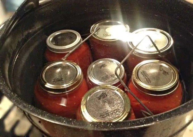 Canning Fresh Tomatoes From the Garden and the Buonpane Family Spaghetti Sauce