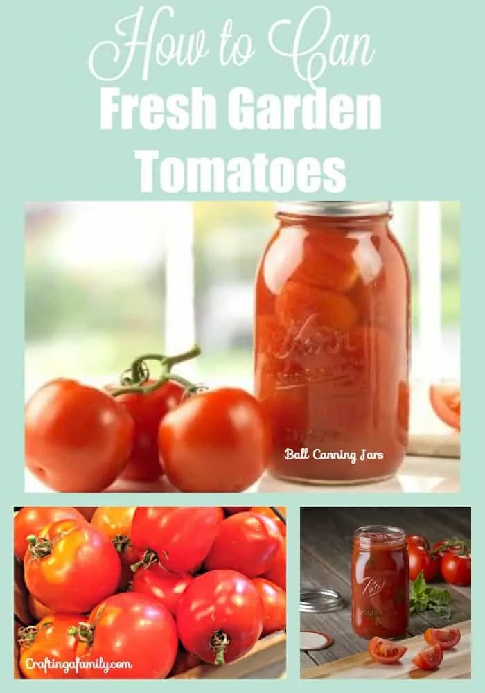 Canning Garden Tomatoes and Family Spaghetti Sauce
