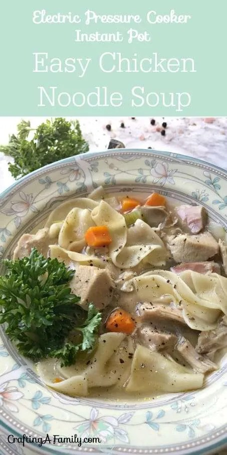 Electric Pressure Cooker Instant Pot Quick Chicken Noodle Soup Recipe