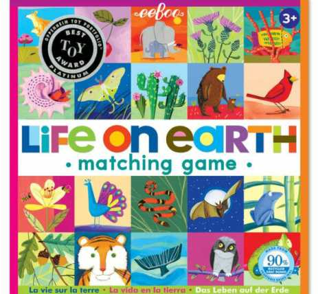 10 Fun Games for Preschoolers - Life on Earth Matching Game