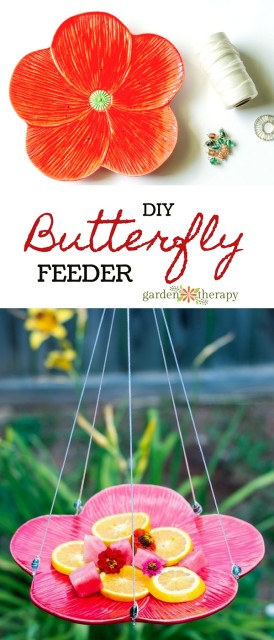 how-to-make-Butterfly-Feeder