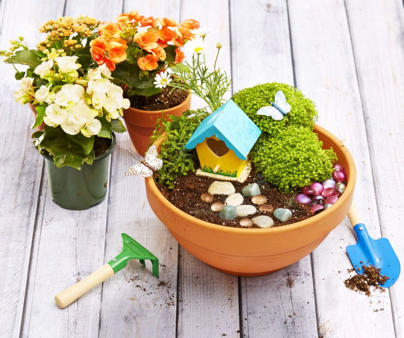 Mini Magic Garden