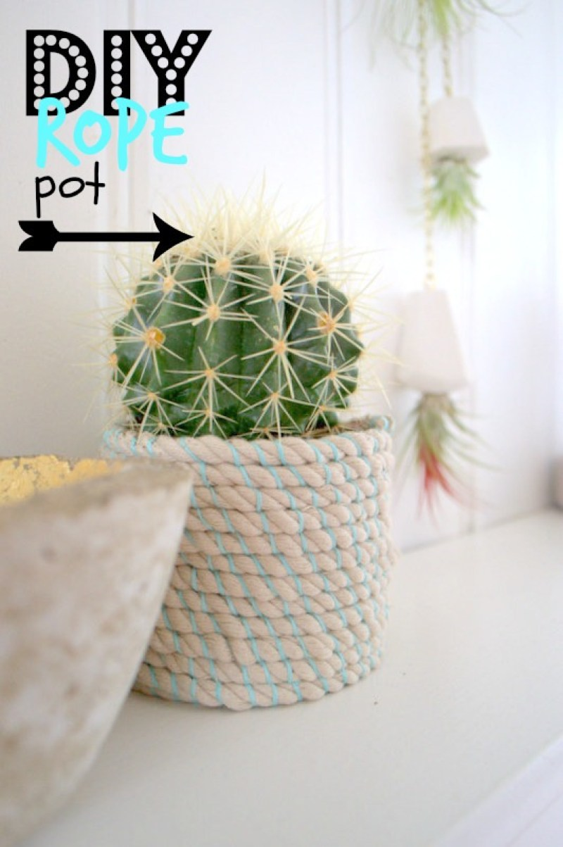 Rope Pot Plant Display