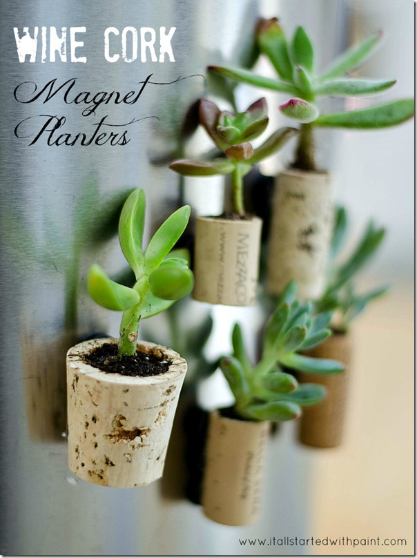 Wine-Cork-Magnet-Planter-diy-plant-gift-ideas