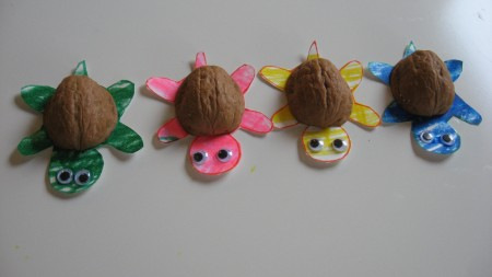 walnut turtles