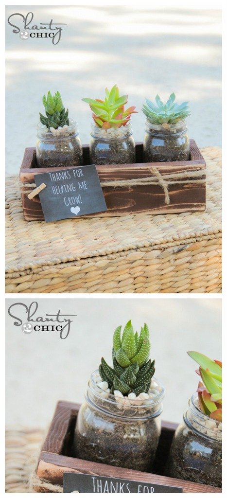 DIY plant gift ideas mason jar planter