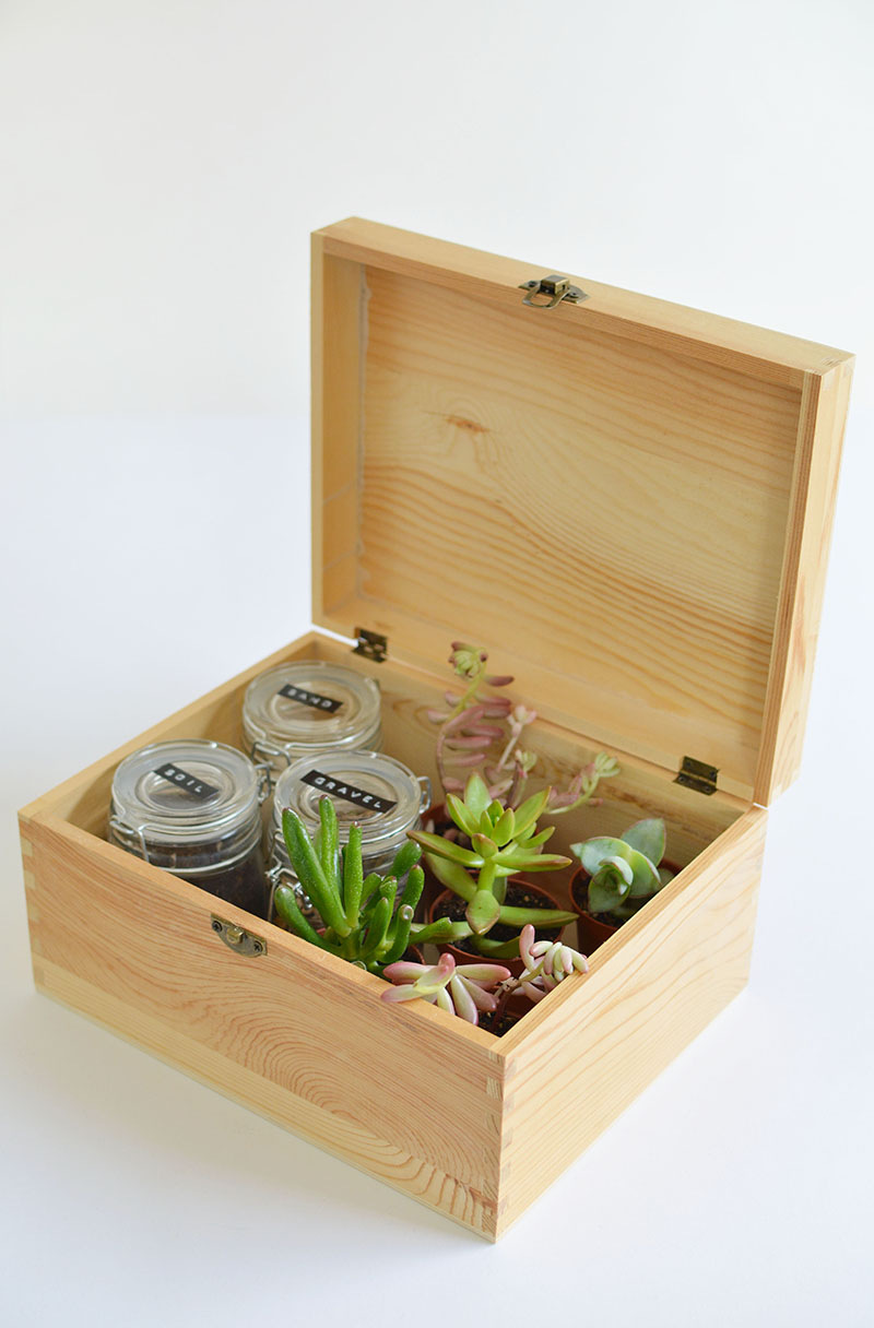 diy-succulent-gift-box-diy-plant-gift-ideas