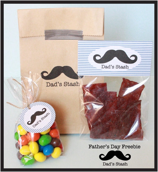 das stash gift ideas