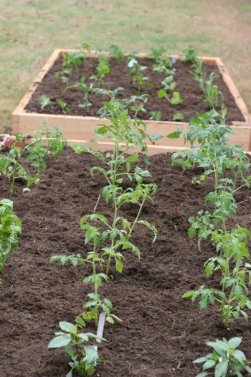 irrigation system for raised bed gardening