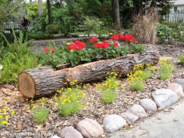 tree-diy-wooden-log-planter