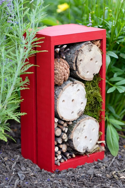 Bug-Hotel-with-images-instructions