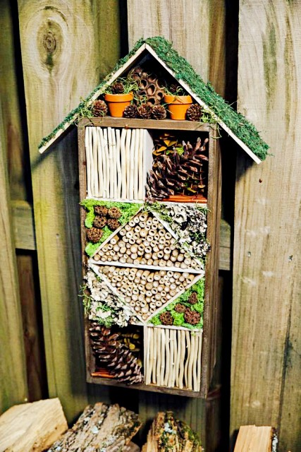 how-to-build-a-bug-hotel-flowers-and-plants-outdoors-hgtv