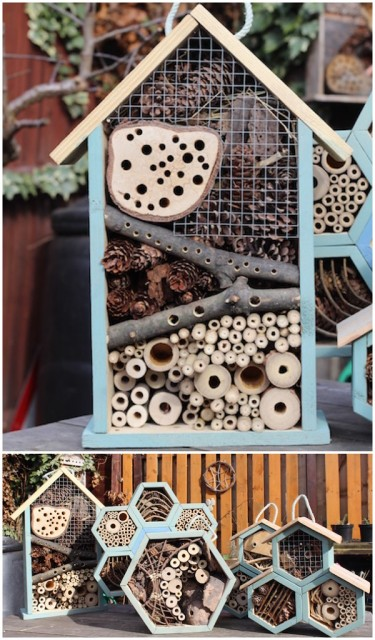 how-to-make-a-bug-hotel-that-really-works