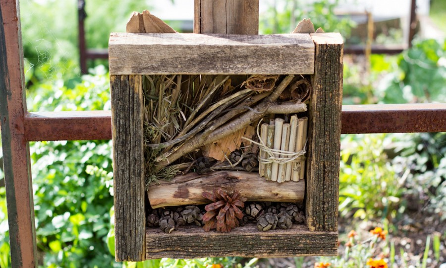 install-simple-Bug-Hotel-at-home-garden