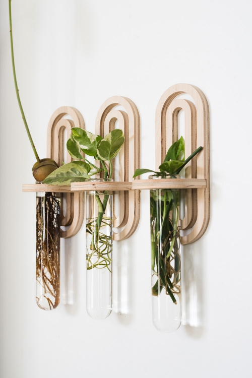 Arched-Propagation-Test-Tube-Planter