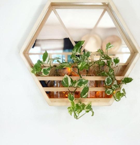 diy-wall-mirror-propagation-station