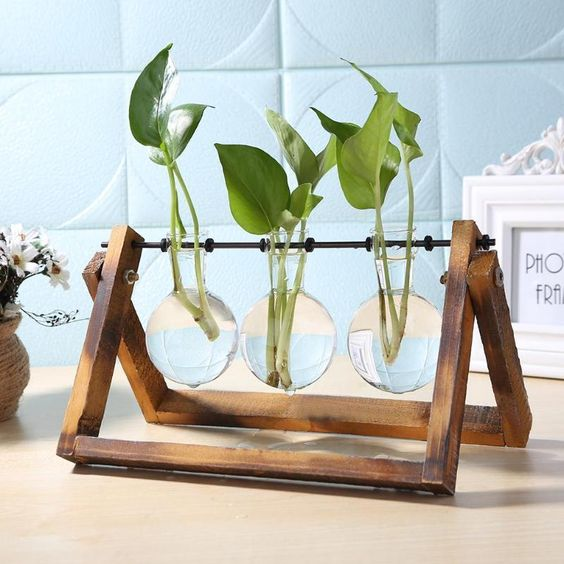 standing-plant-simple-wooden-stand