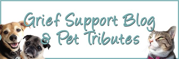 pet loss blog and tributes