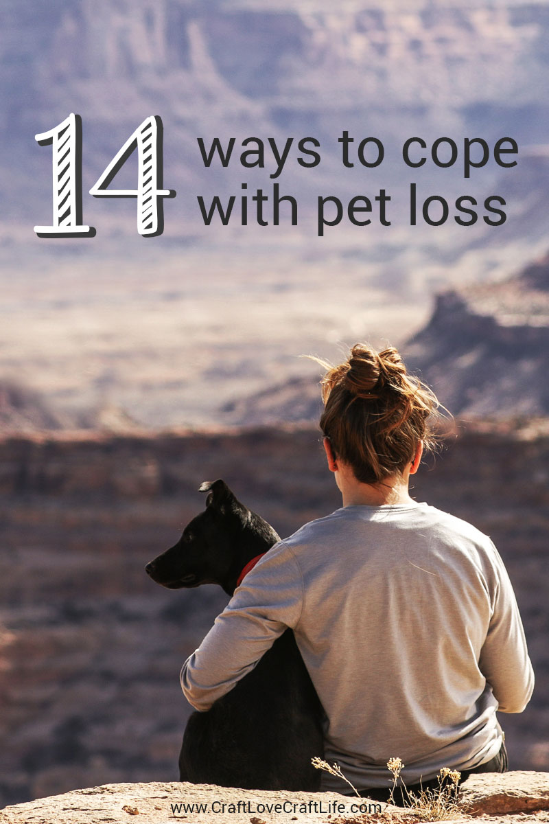 14 ways to cope with pet loss