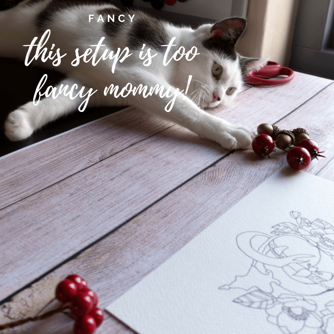 Cat is playing with photography props fancy potion ink drawing
