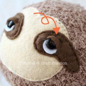 detail sloth eyes