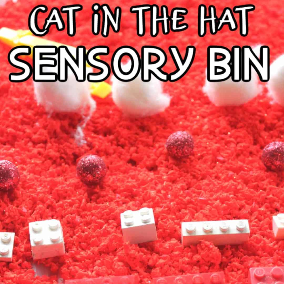Fun Cat In The Hat Sensory Box