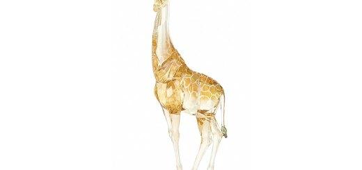 スワロフスキー SCS 2018年度限定作品 「キリン MUDIWA」 ( Swarovski SCS Annual Edition 2018 Giraffe Mudiwa )