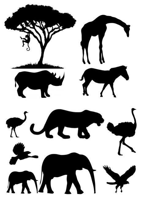 african animal silhouette jungle