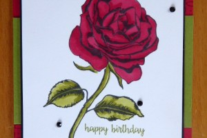 Beautiful red rose birthday card