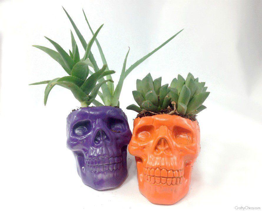 skull-planters2